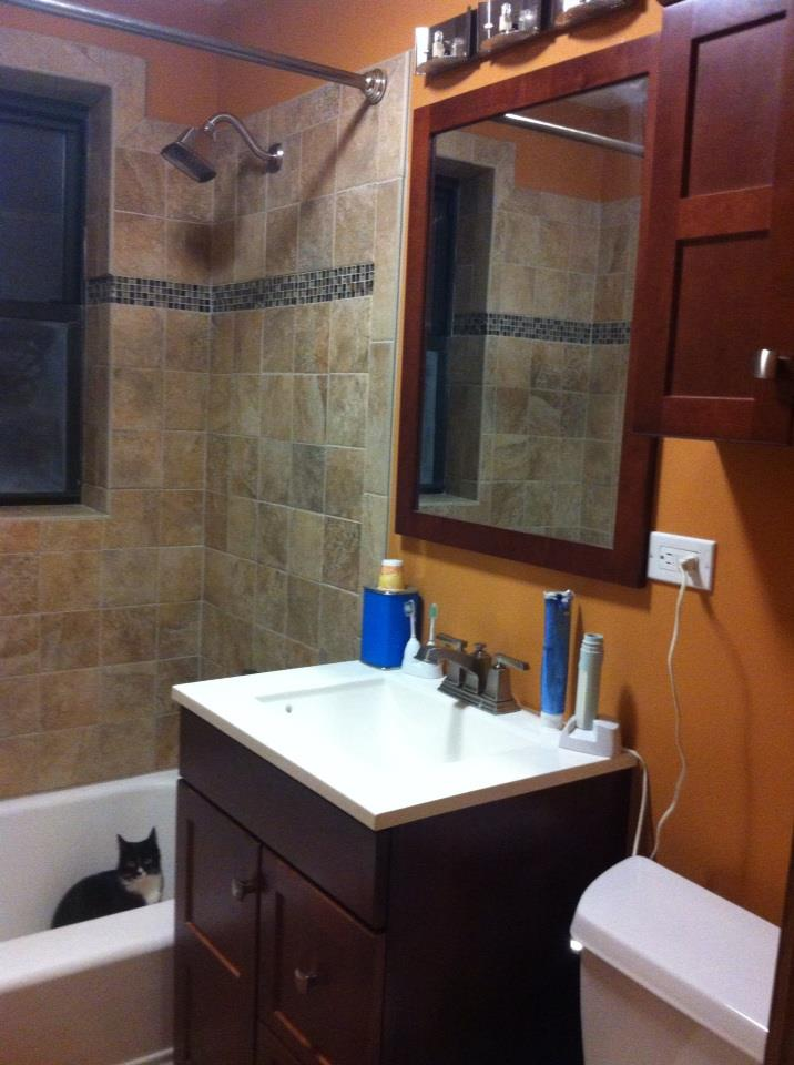 Dienberg And Son General Contractors Dienberg And Son Contractors 630 964 3102